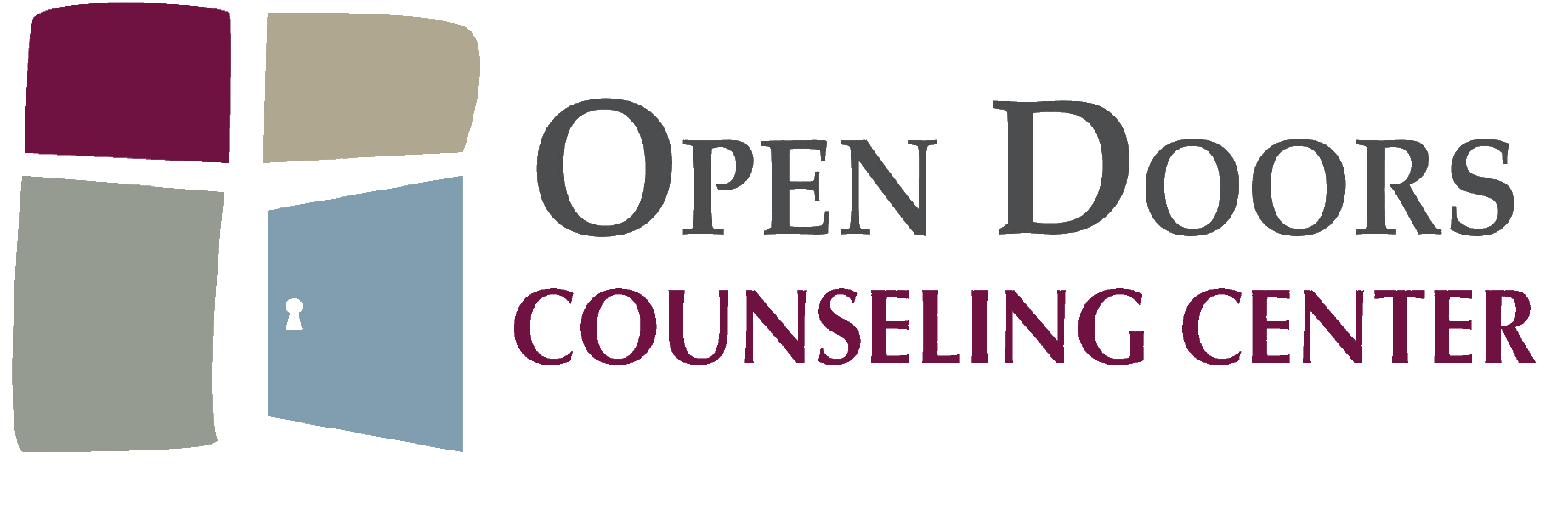 Sarah Haus Registered Mental Health Counselor Intern Open Doors